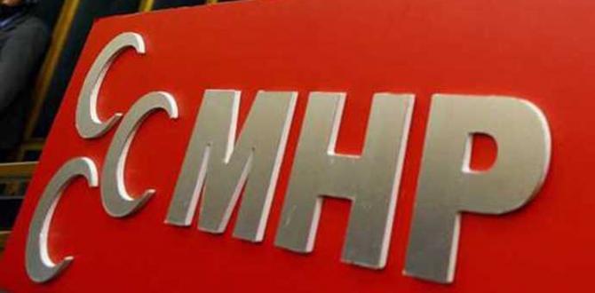 1 Kasım Genel Seçim: MHP milletvekili adayları