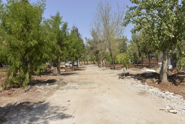 Anıt Park 1