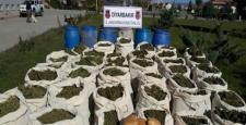 Diyarbakır'da 715 Kilo Esrar Ele Geçirildi