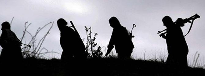 PKK, Cizre'de kargo aracının sürücüsünü öldürdü