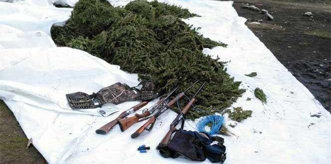 Diyarbakır'da uyuşturucu ve silah operasyonu