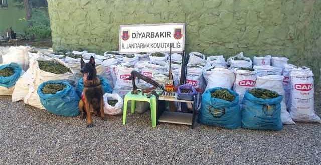Diyarbakır'da uyuşturucuya darbe: 677 Kilo esrar, 292 gram kokain