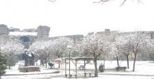 Kar yağışı Diyarbakırda günlük hayatı olumsuz etkiledi