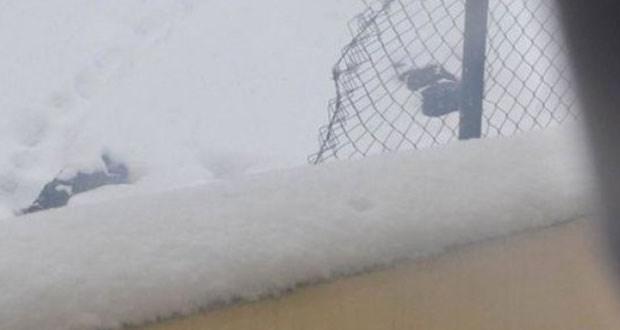 Şırnak'ta alınamayan cenazeler kar altında!