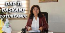 Newroz soruşturmasında DBP İl Başkanı tutuklandı!