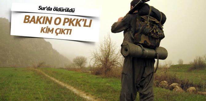 PKK'lı Coğrafya öğretmeni Sur'da öldürüldü
