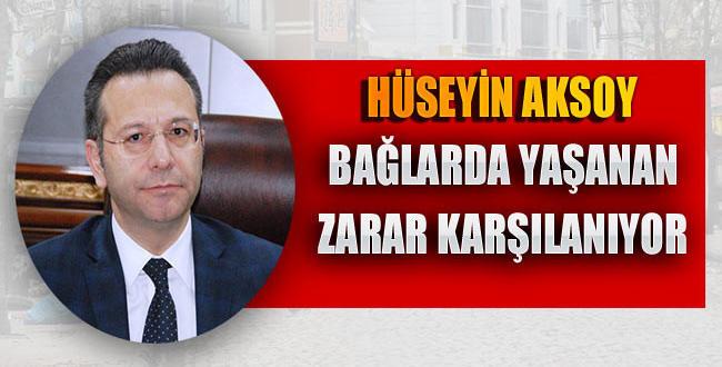 Vali Aksoy: Bağlar'da meydana gelen zararlar karşılanıyor
