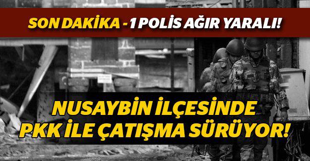 Nusaybin'de özel harekat polisi başından vuruldu