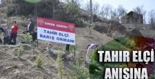 """Tunceli'de: Tahir Elçi anısına """"Barış Ormanı"""" yapıldı"""
