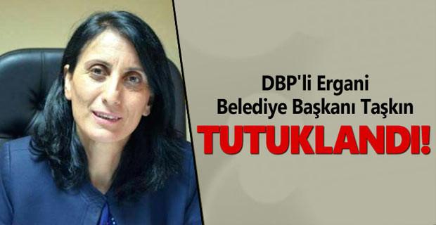 DBP'li Ergani Belediye Başkanı Taşkın tutuklandı