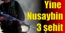 Mardin Nusaybin ilçesinde 3 Asker şehit oldu