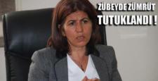 DBP eski İl Başkanı Zümrüt tutuklandı