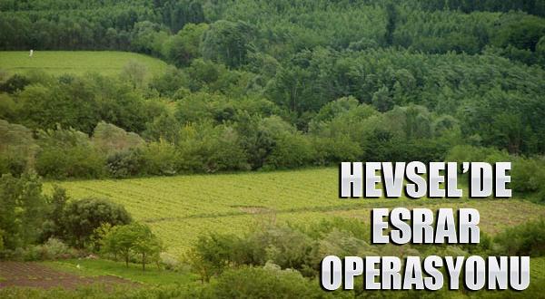 Tarihi Hevsel Bahçelerinde Esrar Operasyonu