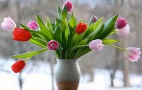 Diyarbakır Çiçekçilik İle Siparişinizi Verin